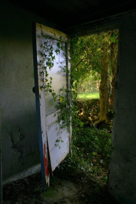 Door Out