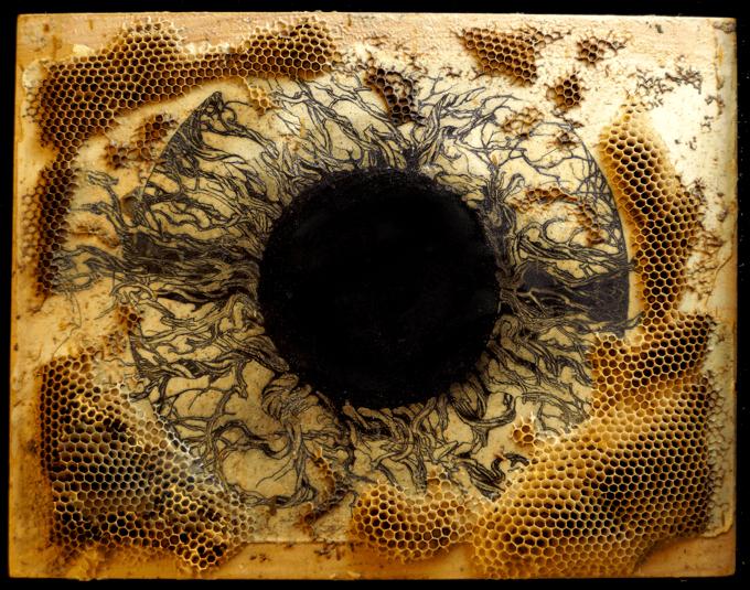 Peering Into the Void, Ladislav R. Hanka