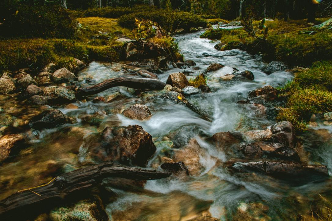 creek_david-latorre-romero
